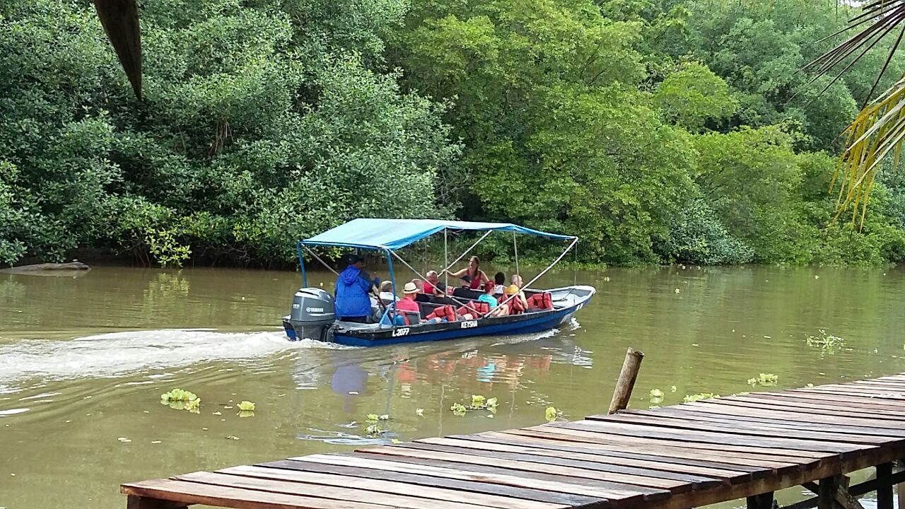 Transportation to Tortuguero Village by Boat